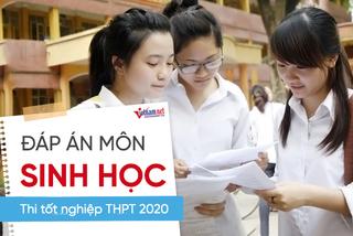 Đáp án môn Sinh học  thi tốt nghiệp THPT 2020 của Bộ GD-ĐT