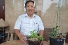 Chủ vườn nhờ đặt nhân ra 1.000 cây lan đột biến, trả ngay 10 tỷ