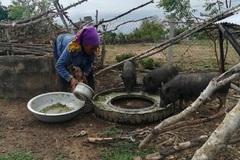 Ninh Thuận ban hành Kế hoạch số 628 về thực hiện Chương trình mục tiêu quốc gia giảm nghèo bền vững năm 2020