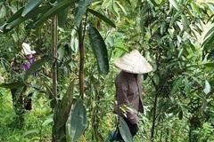 Cảm thấy cuộc sống khá hơn, 83 hộ dân Kon Tum làm đơn xin thoát nghèo