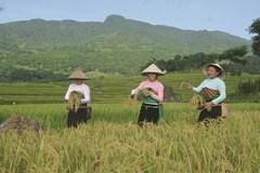 Thanh Hóa: Tốc độ giảm nghèo ở các huyện miền núi cao hơn 1,7 lần bình quân