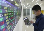 VN stock market grows rapidly in last 20 years