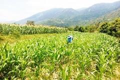 Khánh Hòa tăng cường các hỗ trợ để thúc đẩy giảm nghèo bền vững giai đoạn 2016-2020