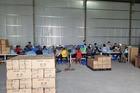 Bắt vụ tái chế hàng triệu găng tay y tế cũ, đóng hộp để bán