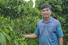 Bỏ nghiệp bóng đá, Giám đốc điều hành CLB HAGL về làm nông nghiệp hữu cơ
