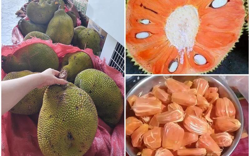 Đúng vị quê xưa: Ngửi hương thị thơm, ăn quả na bở