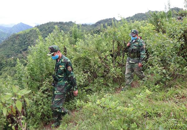 Border guards contribute toCOVID-19 fight