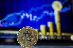 Giá đồng Bitcoin tăng gấp 3 lần kể từ tháng 3