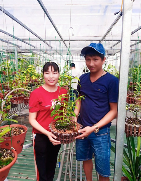 Dân chơi tiết lộ: 5 khác biệt giữa lan var Việt và lan cấy mô Đài Loan