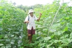 Bà con huyện Duyên Hải thoát nghèo nhờ hỗ trợ phát triển sản xuất, đa dạng hóa sinh kế