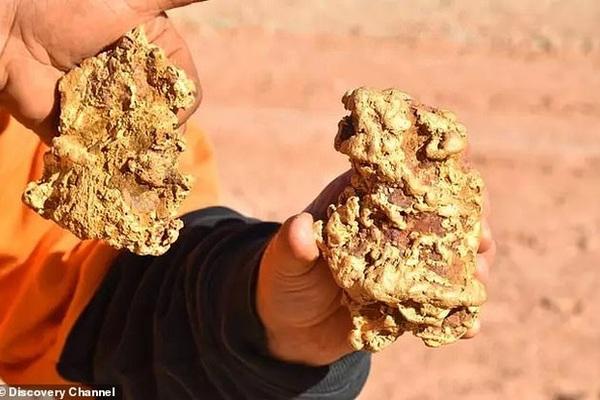 Hai anh em săn kho báu đào được 2 cục vàng trị giá 8 tỷ đồng