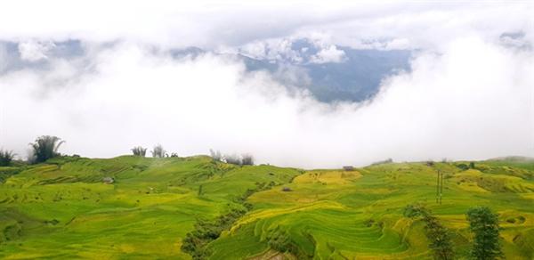Harvest season begins in the mountains of Y Ty Commune