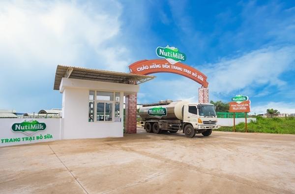 NutiFood ra mắt trang trại bò sữa, công bố sữa tươi đạt chuẩn châu Âu