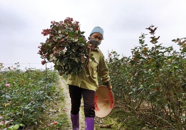 Hà Nội: Hỗ trợ giảm nghèo ở 14 vùng dân tộc miền núi