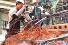 TP. HCM: Xây dựng chiến lược phát triển ngành cơ khí - tự động hóa phù hợp thực tế