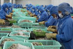 TP Vũng Tàu: Chăm lo đào tạo nghề, giải quyết việc làm để phát triển bền vững