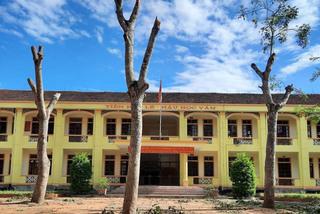 Trường cấp 2 ở Nghệ An chặt trụi hàng loạt cây xanh
