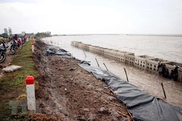 Ca Mau declares landslide emergency at western sea dykes