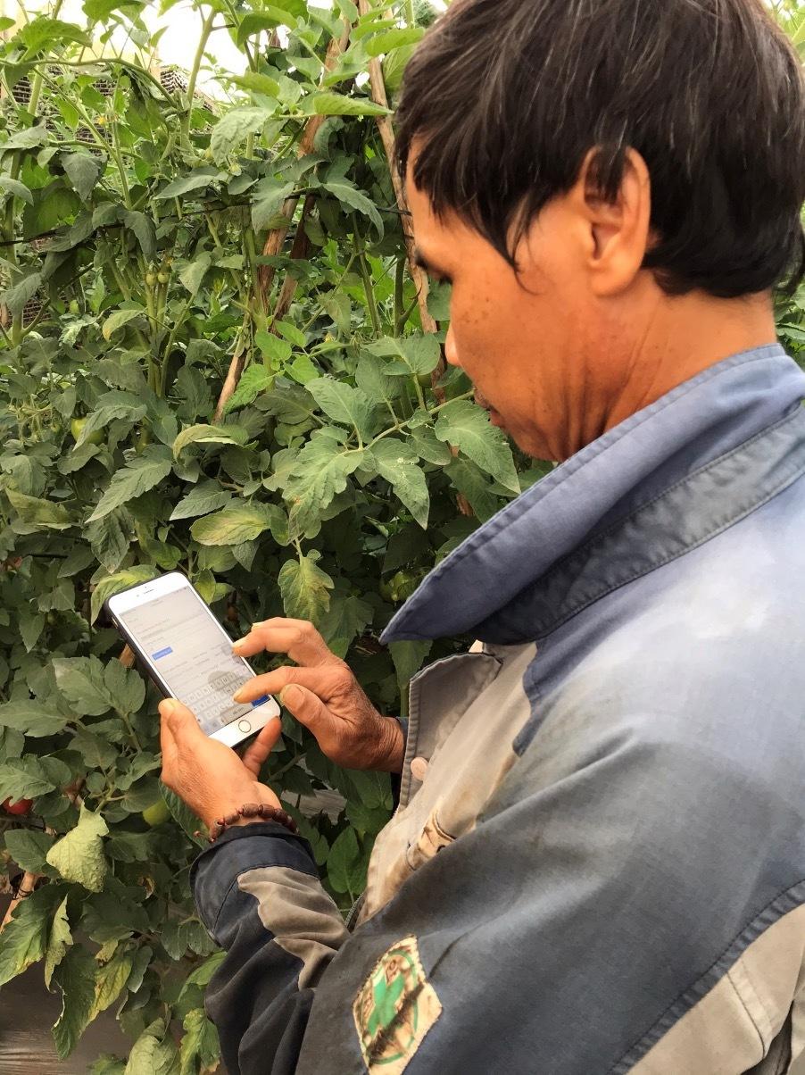 Chiếc smartphone nắm giữ số phận anh nông dân tiền tỷ