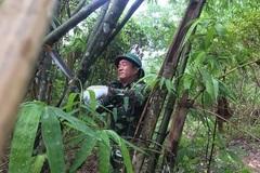 Lính biên phòng chặt tre dựng lán, chốt chặn biên giới chống dịch
