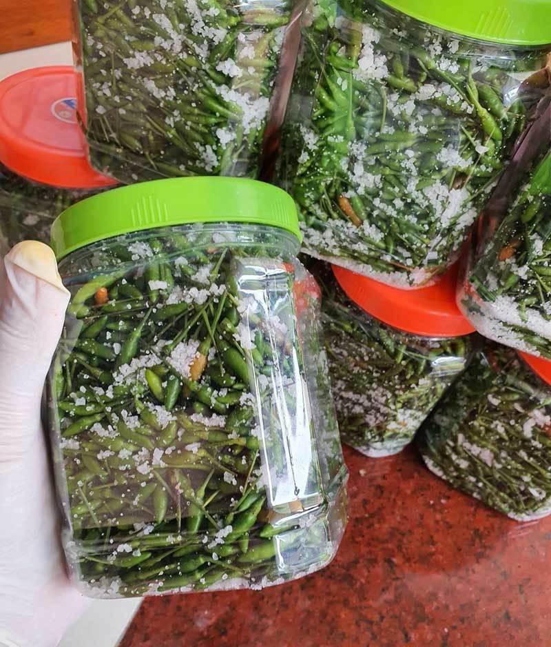 Loại ớt gió thơm mùi thảo mộc, 1 triệu đồng/kg vẫn đắt khách