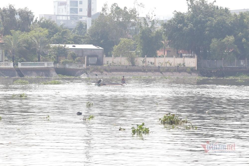 Cá phóng sinh Rằm tháng Bảy chưa kịp bơi đã bị chích điện