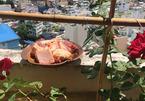Cách làm thịt kho tàu thơm lừng, bắt mắt với bí quyết lạ