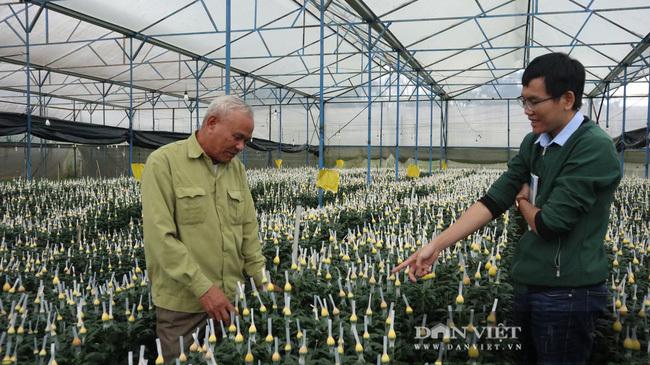 Lão nông chơi trội, bỏ 75 cây vàng mua đất chỉ để trồng hoa