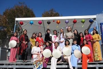 Vietnamese students in Japan launches online school fair