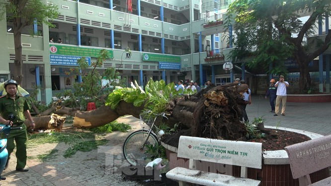 Cổng trường sập đổ và những cái chết xót thương ở trường học