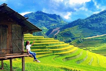 Thua lỗ trăm tỷ, giám đốc du lịch đi bán hoa quả, trà sữa