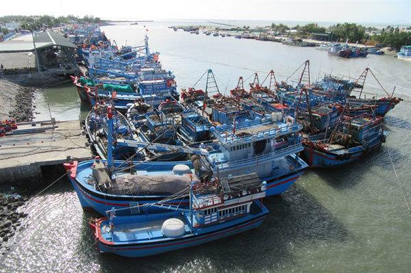 Stronger measures needed to combat IUU fishing: Deputy PM