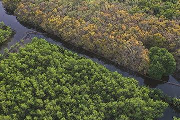 Ru Cha offers wetland wonderland for visitors
