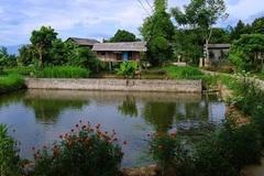 Điểm sáng nông thôn mới Yên Bái