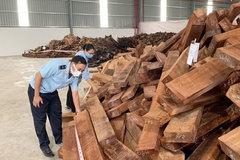 Phát hiện lô gỗ quý 'khủng' nhập lậu từ Nigeria vào Việt Nam