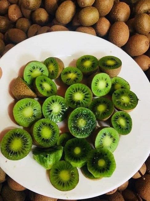 Ham của lạ, chị em đặt mua kiwi rừng tí hon và cái kết 'cười ra nước mắt'