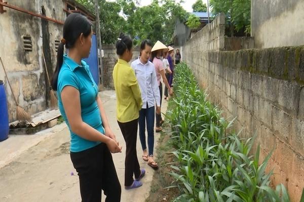 Phong trào '5 không 3 sạch' xây dựng nông thôn mới của phụ nữ Tân Cương