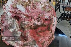 Vô tình vớ được cục đá lạ nghi 'long diên hương', chủ nhân bán vội cũng được tiền tỷ