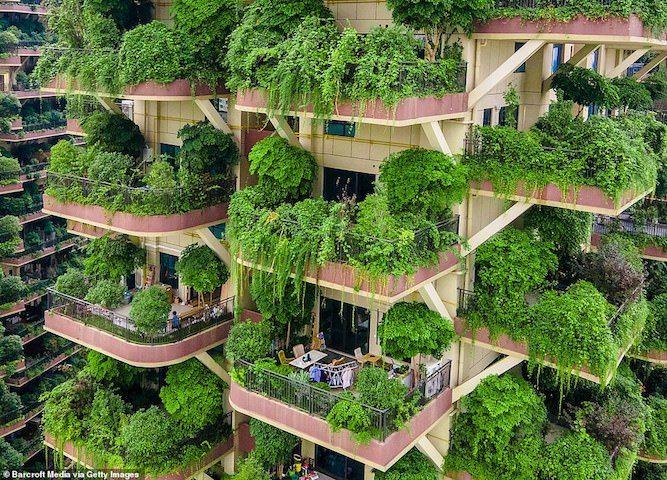 Lạnh người trong chung cư xanh vắng người giữa thành phố