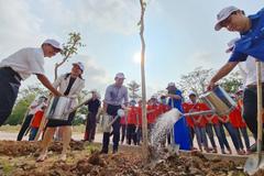 Thêm 1.400 cây 'phủ xanh' không gian trường học ở 6 tỉnh thành