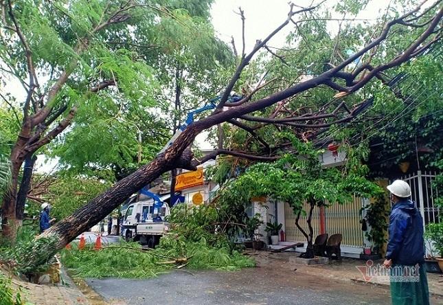 Bão vào đất liền, cây đổ ngổn ngang, nhà tốc mái cả loạt ở miền Trung