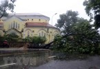 Storm Noul makes landfall in Thua Thien-Hue