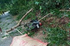 Bão số 5 đổ bộ miền Trung: 1 người chết, nhiều người bị thương