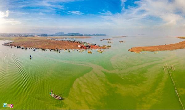 Tri An Lake appears charming in green algae season