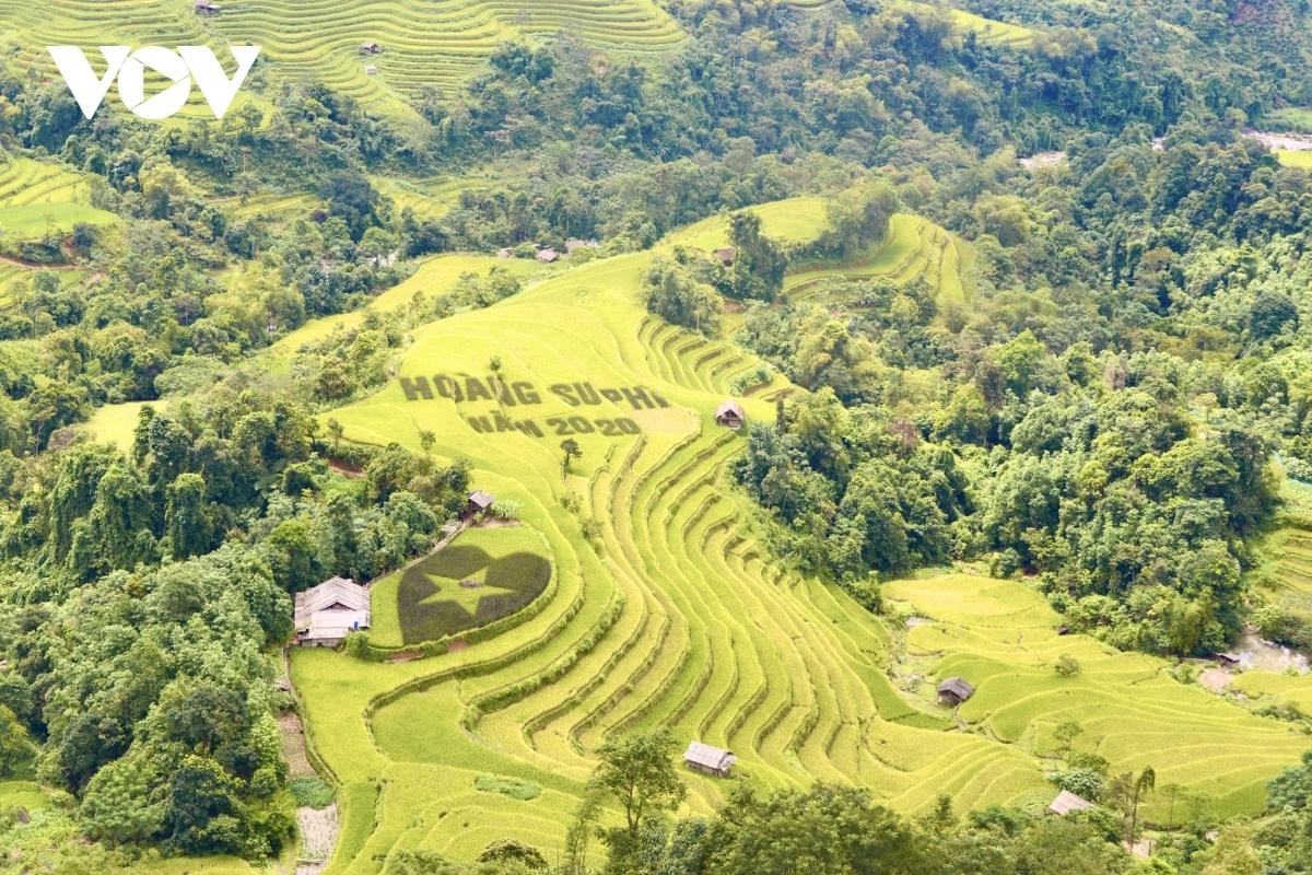Terraced fields,Hoang Su Phi,vietnam travel,Ha Giang travel