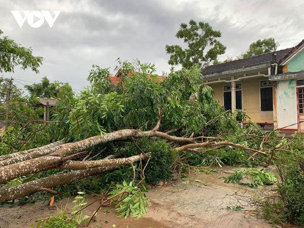 Storm Noul death toll rises to 6, Thua Thien-Hue hardest hit