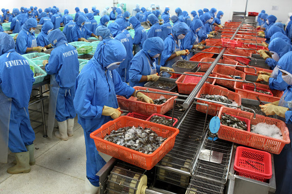 Vietnam's farm produce gears up for EU under new trade agreement