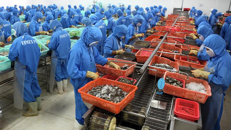 vietnam farm produce,vietnam seafood,EVFTA