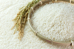 First batch of fragrant rice to be exported under EVFTA
