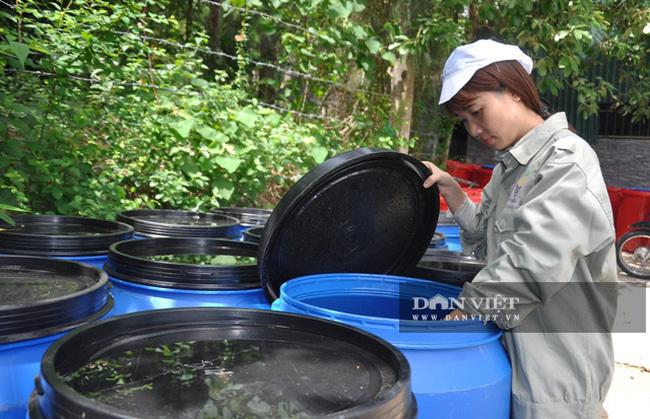 Nhặt thứ rác thiên hạ vứt đi về 'hô biến' thành nước tẩy rửa, gái xinh ngành kiểm toán nổi như cồn